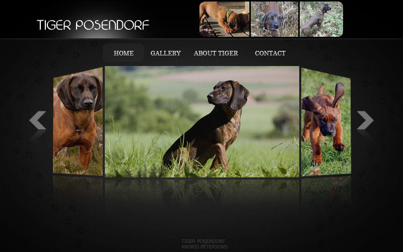fc09.deviantart.net/fs71/f/2014/306/e/5/tiger_posendorf_portfolio_by_andrisprod-d84zzw8.png