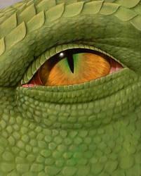 Dragonatomy 8 by Elandain