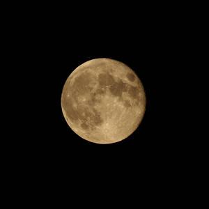 Dyan Moon.