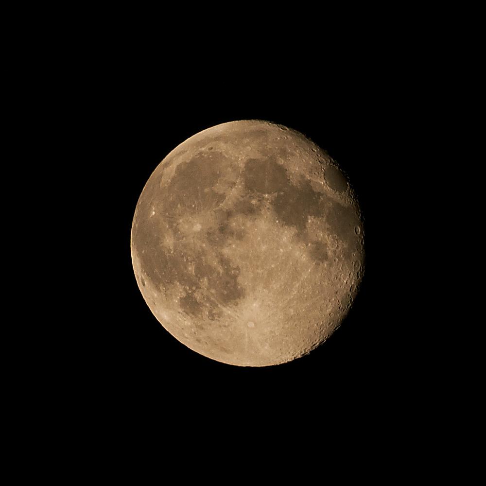 Blue Moon +1. by quaddie