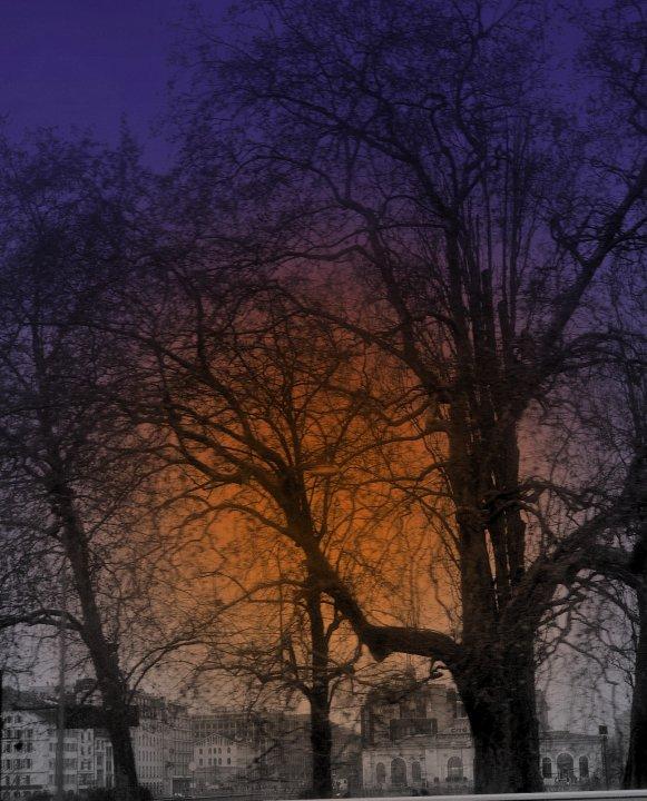 Purple Rain by kohtalo8