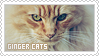 Stamp: Ginger Cats by apparate