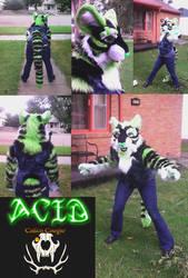 Acid the Toxic Tiger