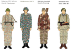 Early Warsaw Pact camo Part 2