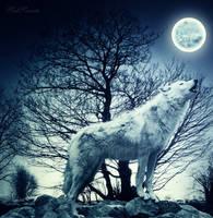 Howl! by SadSonata