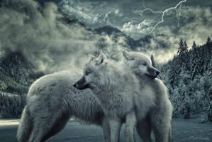 Winter by SadSonata