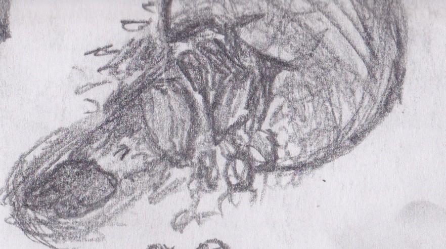pencil drawn planets - photo #11