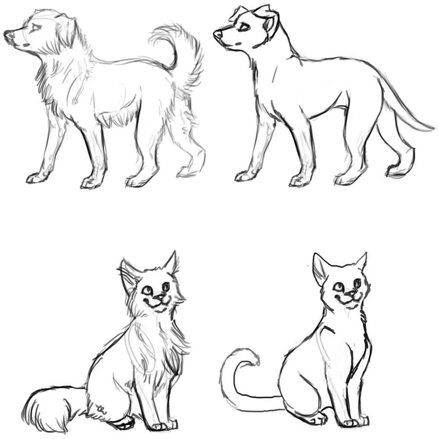Dogs and Cats WIP by Mauston-girl - 85.2KB