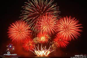 Platinum Fireworks 2011 - 01