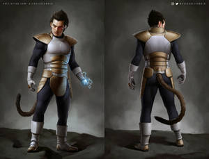 Vegeta Concept Art - First suit