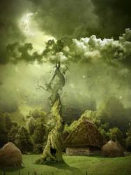 Fairy night. Beanstalk.