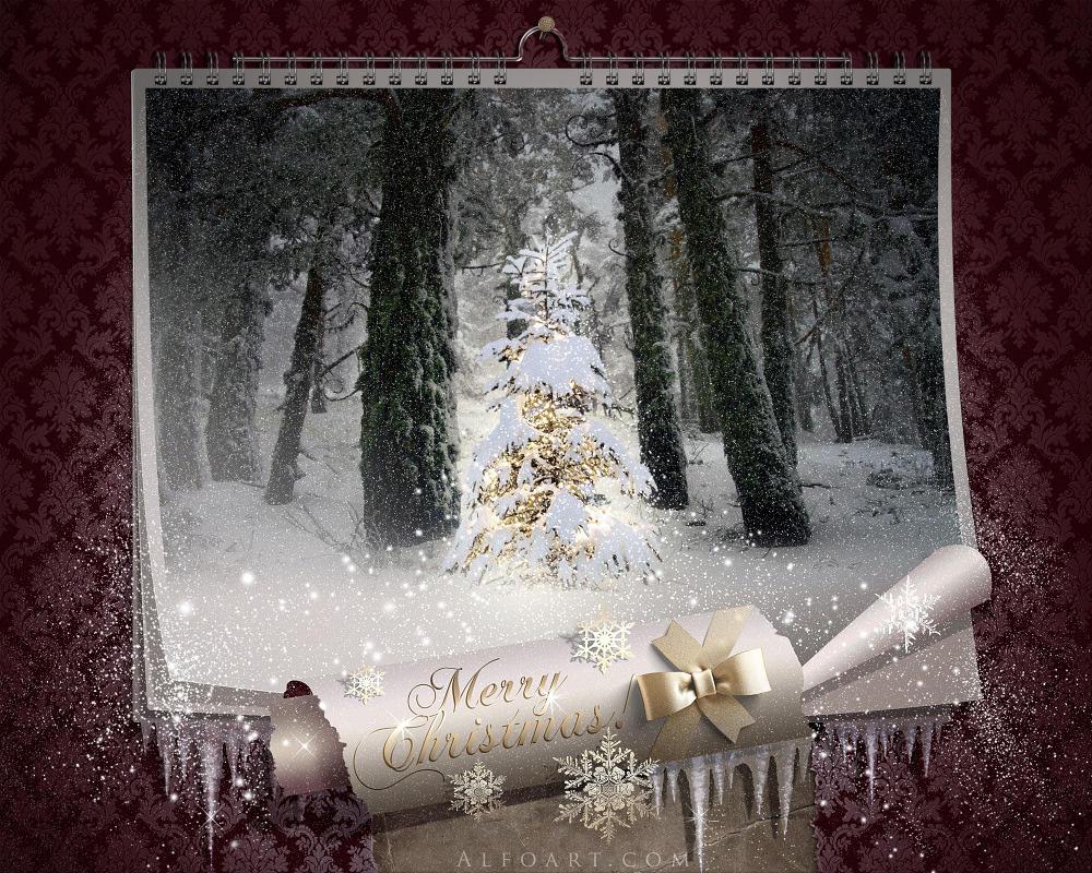 Fairy Christmas night.