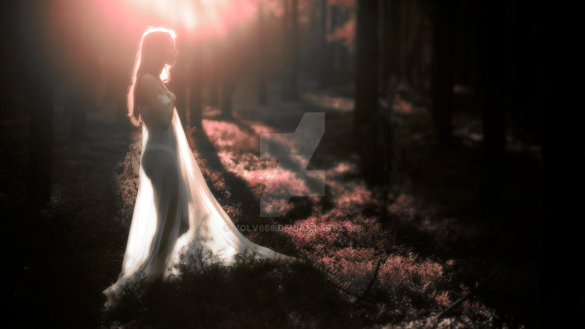 Light of my life by Volv666