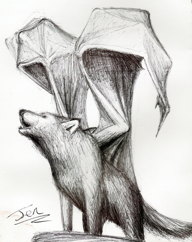 Wolf Dragon by nunt
