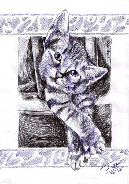 Cat by nunt