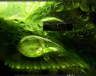 Linux Mint 5 Fluxbox by adriannvl