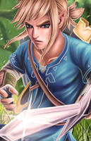 Breath Of The Wild Link (updated) by Stanglass
