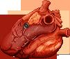 Organs Shouldn't Stare by Suboshigrl