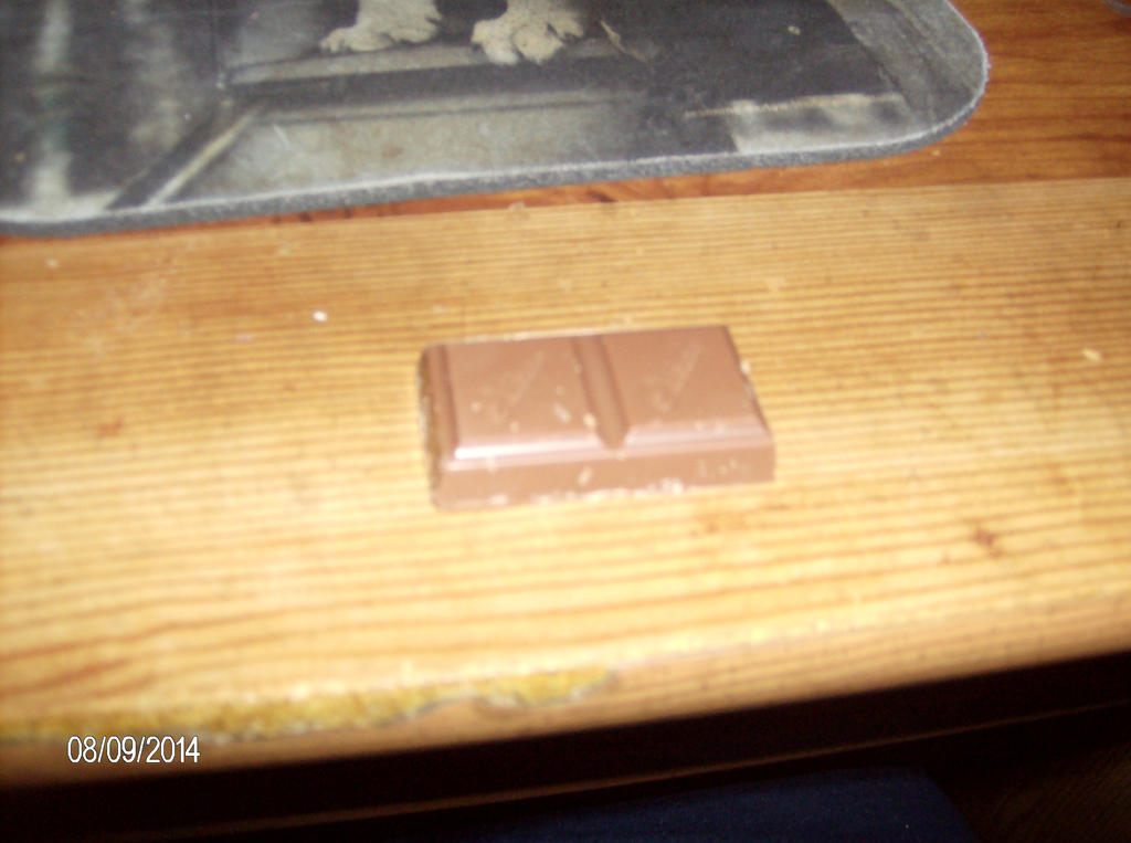 Speed dating buffalo chocolate bar