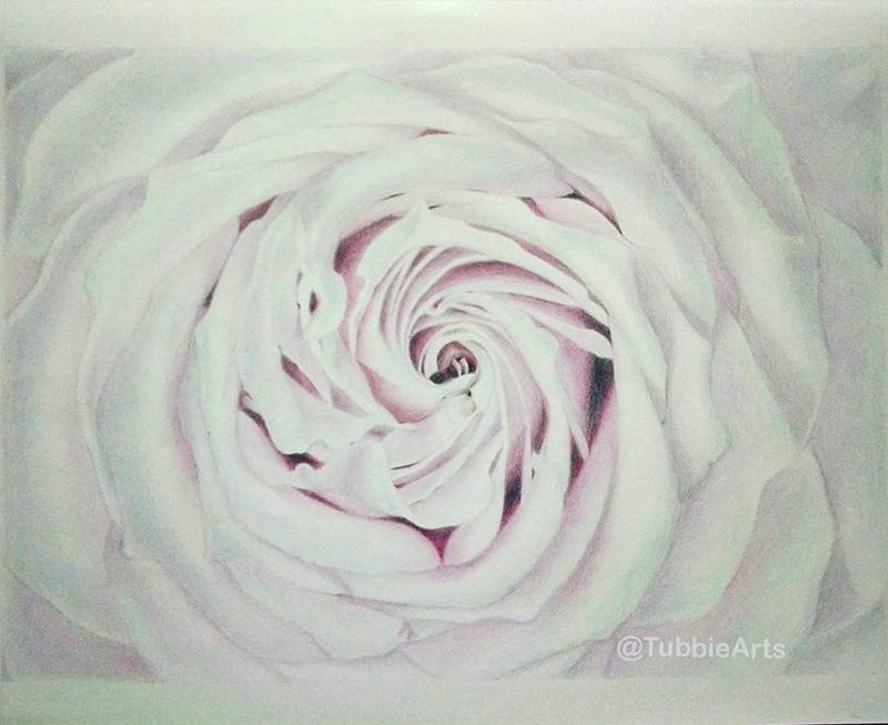 Rose by TubbieHead