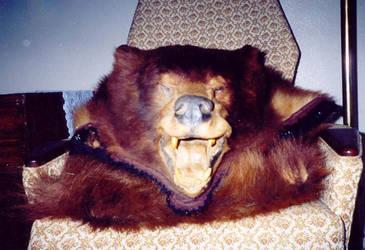 BearStock by infinatefatalle