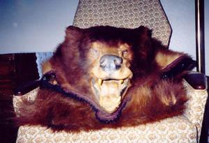 BearStock
