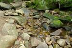 Rocky Stream Stock