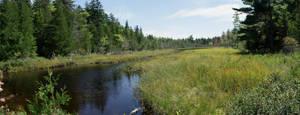 Maine Stream (stock)10November 10, 2012