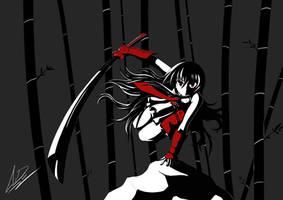 Akame Ga Kill! by EidoShooter