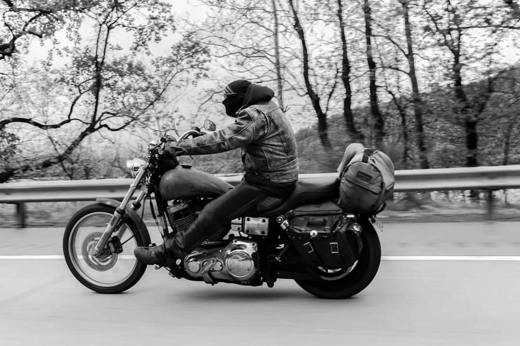 Easy Rider by RogueDove