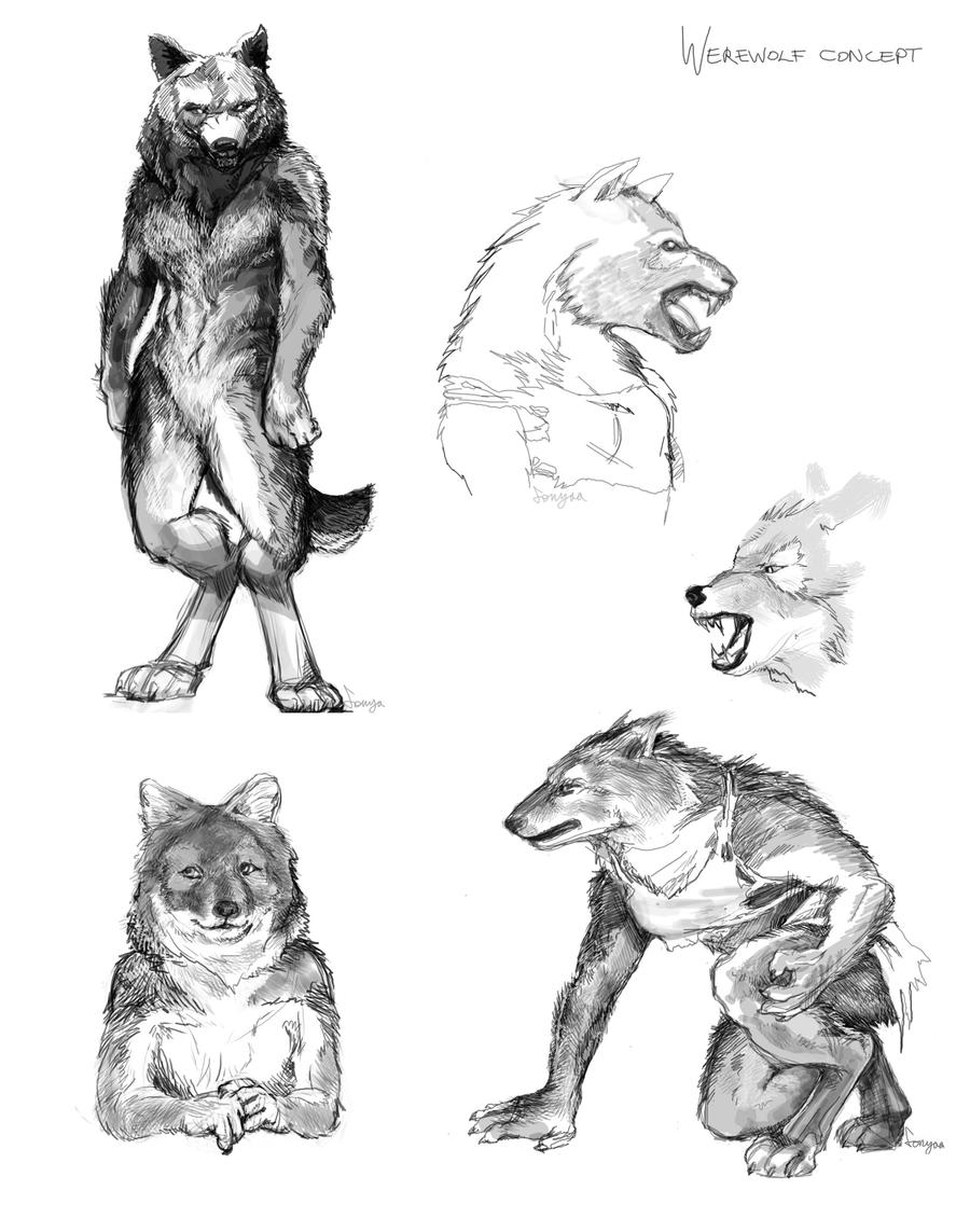 Werewolf Concept by Fonya on deviantART