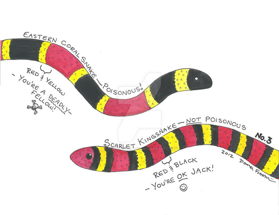 What is the snake that looks like a coral snake 10