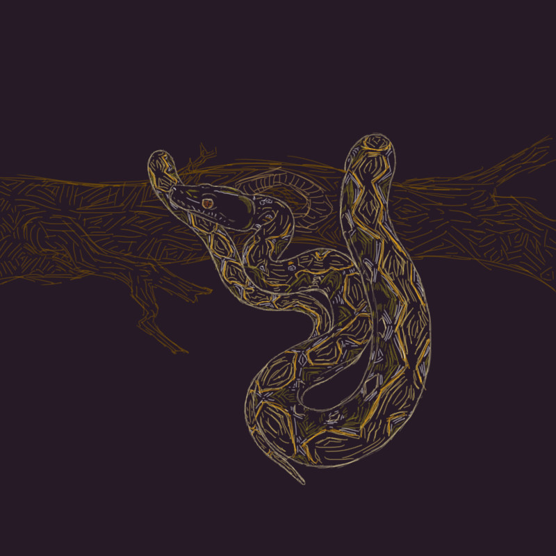 Reticulated Python by KuraiAme
