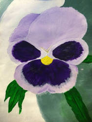 Pansy Painting by Auroen