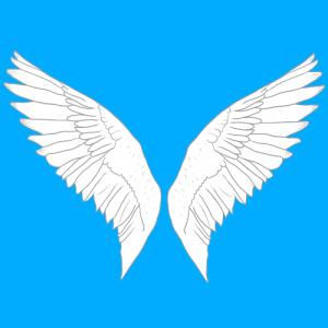 Veloxization's Profile Picture