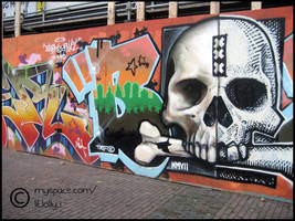 Skull Graffiti by stallardl