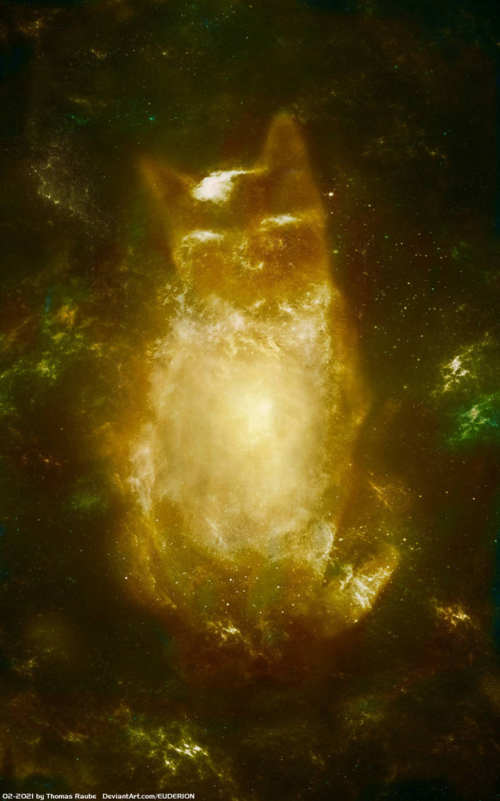 Hoshis Nebula
