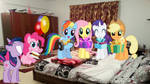 Request: Mane 6 Surprise A Special Someone