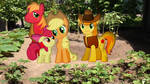 Apple Family Photo In The Garden by Mr-Kennedy92