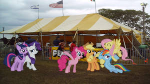 Mane 6 Go To A Petting Zoo