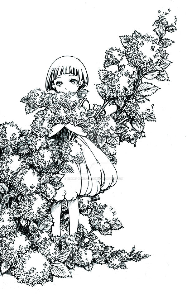 Hydrangea_macrophylla by Silent-Voice-Group