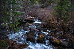 Sharrott Creek by quintmckown