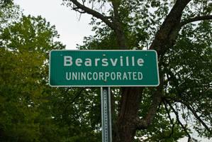 ID Bearsville by quintmckown