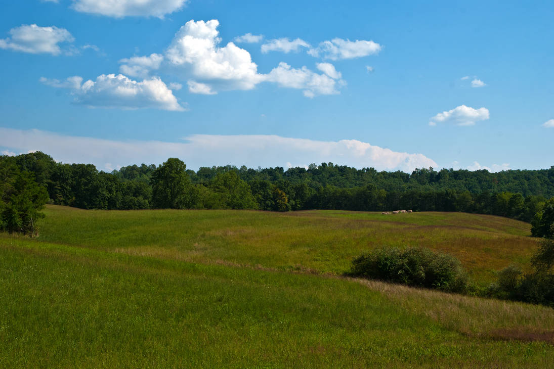Tyler County (West Virginia) Farm 2 by quintmckown