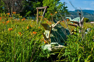 Stop and Smell the Daylillies by quintmckown