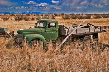 Out to Pasture by quintmckown