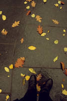 Autumn in New York City by ChelseaIsAPansy