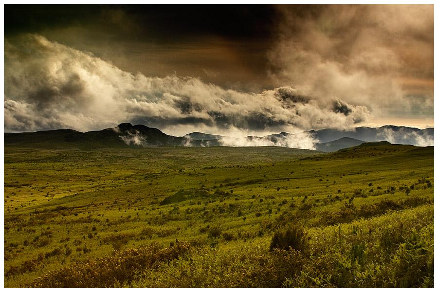 Field Paul da Serra by damnengine