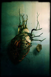 Return to Reason - heart by damnengine