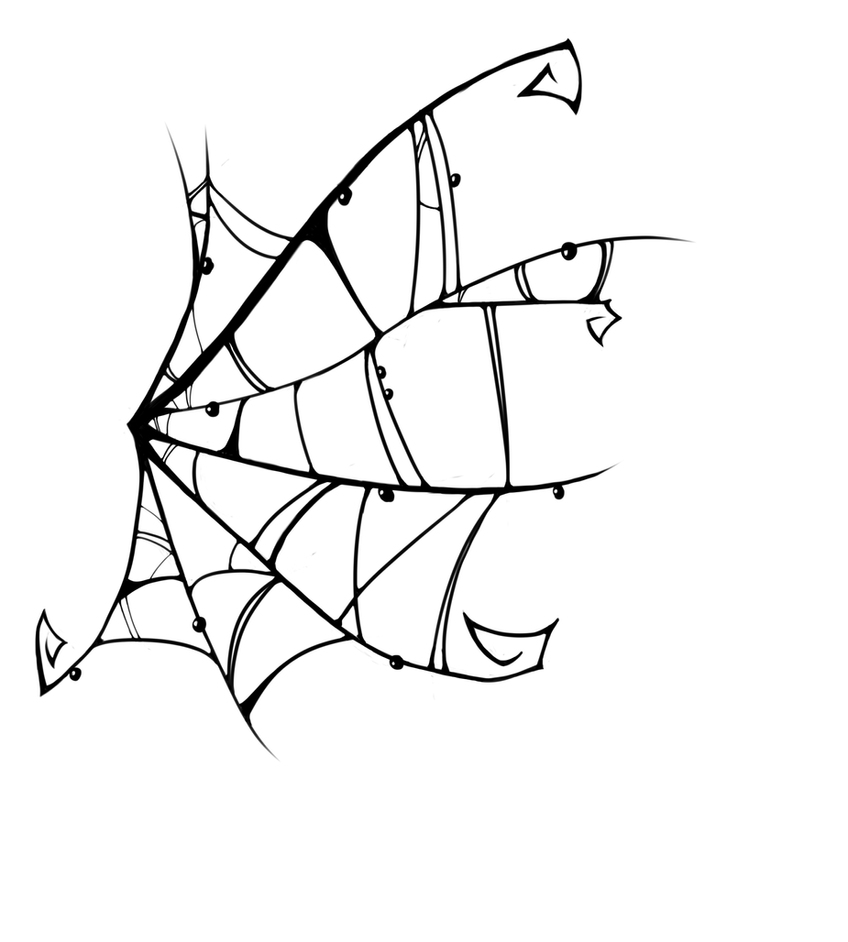 Spider in web drawing - photo#15